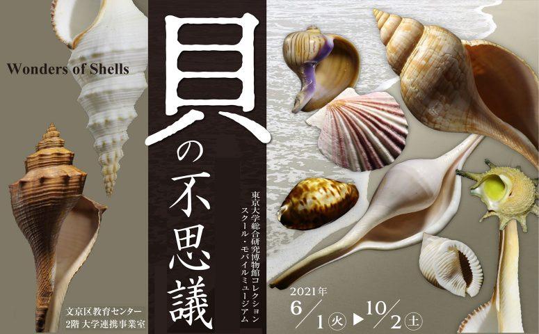 "School Mobilemuseum, UMUT ""Wonders of Shells"""