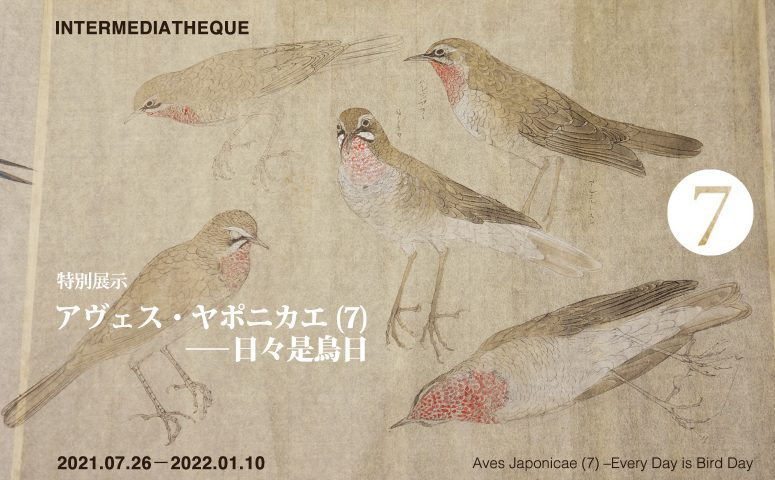 """Special Exhibition """"Aves Japonicae (7) –Every Day is Bird Day"""""""